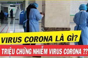 Tăng cường sức đề kháng bảo vệ phổi với Đông trùng hạ thảo trong mùa dịch Corona