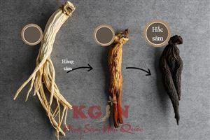 Hắc sâm Hàn Quốc giá bao nhiêu? Mua hắc sâm khô Hàn Quốc ở đâu uy tín?